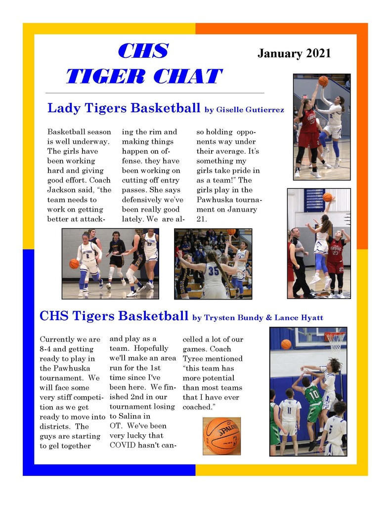 Tiger Chat (January 2021)